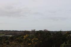 IMG_8198 (MariaLardi) Tags: field project landscape site mud trails dorset poole studland oilwells shellbay pooleharbour furzeyisland designdevelopment arnenaturereserve wytchfarmoil