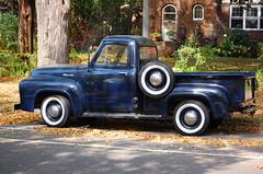 1954 Ford F 100 truck (grizfan) Tags: ford truck f100