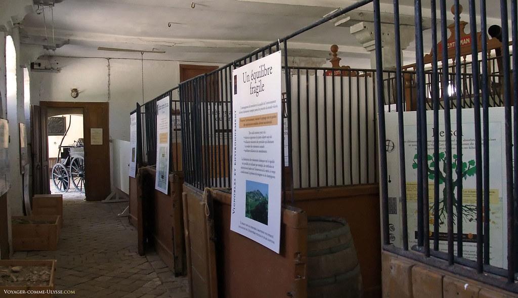 Les écuries ont été partiellement réaménagées pour servir d'exposition sur les vignobles de la région