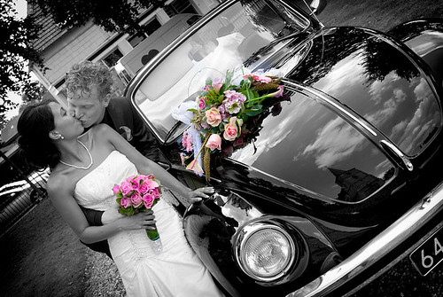 The Love Bug by Siebe