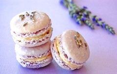 My First Attempt ... (~Trs Chic Cupcakes by ShamsD~) Tags: macarons shamsd shamimadesai