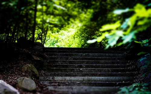 Prospect Park Stairs