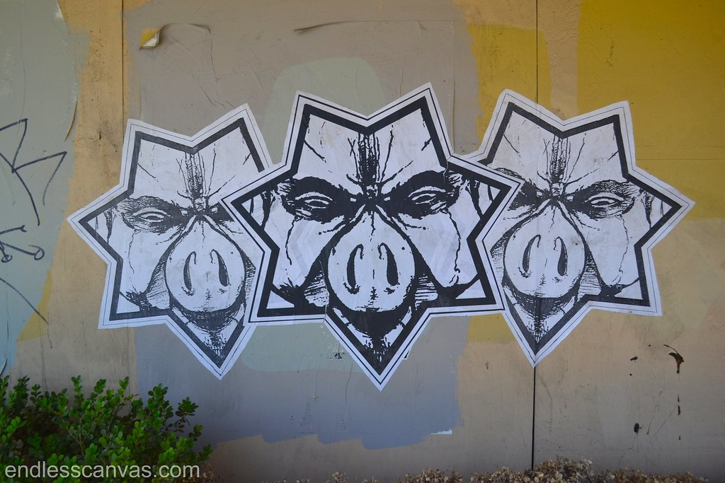 STARPIG, NMG, Not My Government, Oakland, Street Art, Graffiti