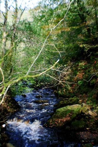 Burn (stream) at Haltwhistle