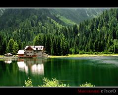 Lago dolomitico (marcorenieri) Tags: panorama verde lago acqua colori montagna dolomiti controluce bosco mygearandme greaterphotographers