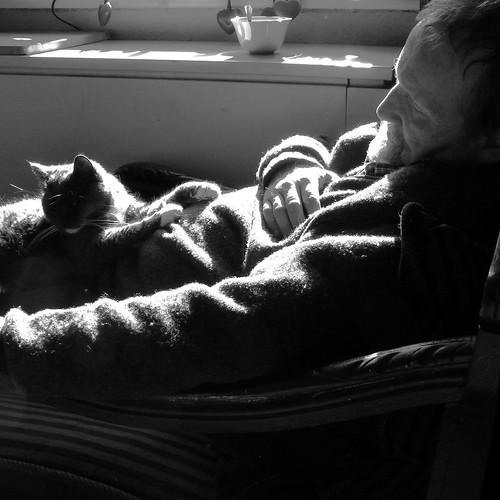 cat-nap-duo