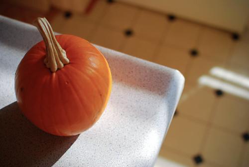 pumpkin-0089