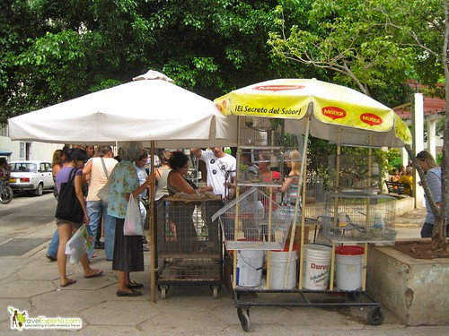 Pet Selling in Havana Vieja Cuba