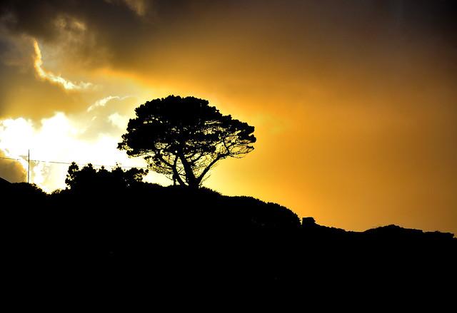 Setting Sun. By R J Watson