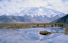 Karakul lake (Woods | Damien) Tags: blue sky cloud mountain lake snow reflection film landscape rangefinder slidefilm xinjiang   paysage olympus35sp karakoramhighway fujichromevelvia50