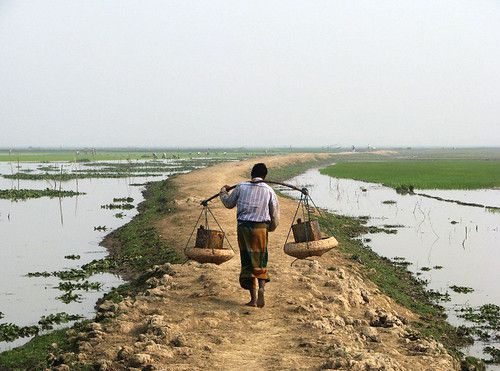 Submergible earthen road through the haor, Sunamganj, Bangladesh. Photo by Balaram Mahalder, 2008