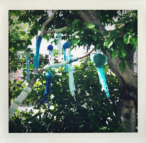 Jellyfish in the Kokua Market Yarnstorming