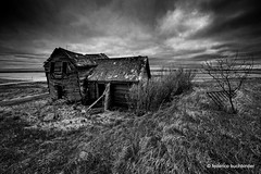 Springhill (/ shadows and light) Tags: wood old sky bw house tree abandoned monochrome grass fence gate decay grain springhill manitoba textures prairies decayed decaying collapsed collapsing ruralexploration rurex