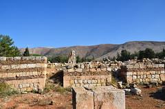 Anjar, Umayyad city, al-Walid I, 705-15, along the decumanus maximus (9) (Prof. Mortel) Tags: lebanon umayyad anjar