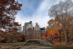 Essex House (KeneL9999) Tags: park nyc blue autumn trees sky ny color fall stone centralpark foliage artsy cite essexhouse flickraward
