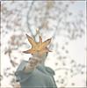 (Tuan__) Tags: color 120 6x6 film colors mediumformat colours kodak hasselblad portra selfdeveloped gettyimageswants gettyimagesportraits gettyimagesportraiture gettyimagesportrait