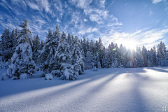 winter dream (gregor H) Tags: christmas blue trees sunset shadow sky cloud snow alps reflection backlight austria cool scenery quiet shadows natural spirit patterns natur sunny wideangle powder clear naturereserve vista snowfield wintertime breeze whitesnow wintertrees beautifulday coldness winterstale vorarlberg whitetrees snowcrystals blindinglight snowcover winterlove winterforest coldblue bödele whitesplendor strongwinter coveredwithfrost sunshineonfrost snapseed