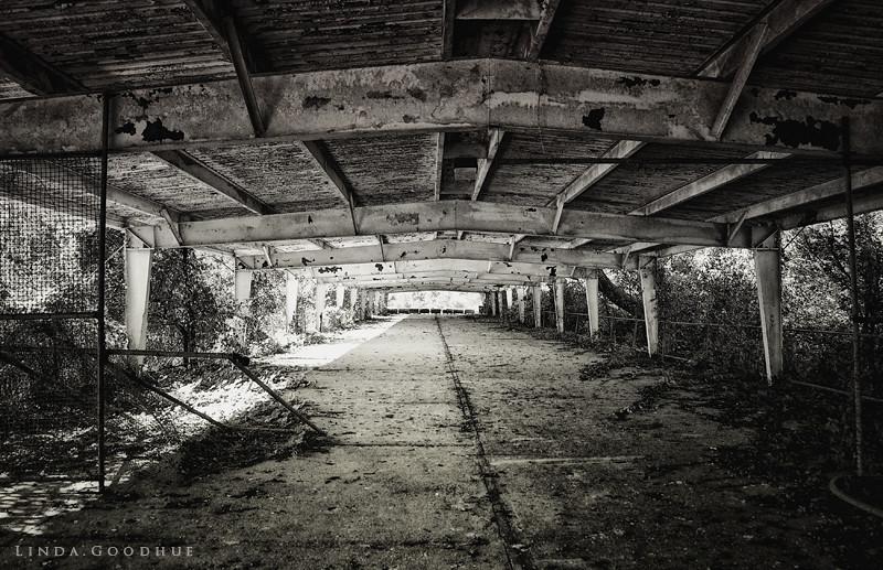 Abandonded dock...Boblo Island