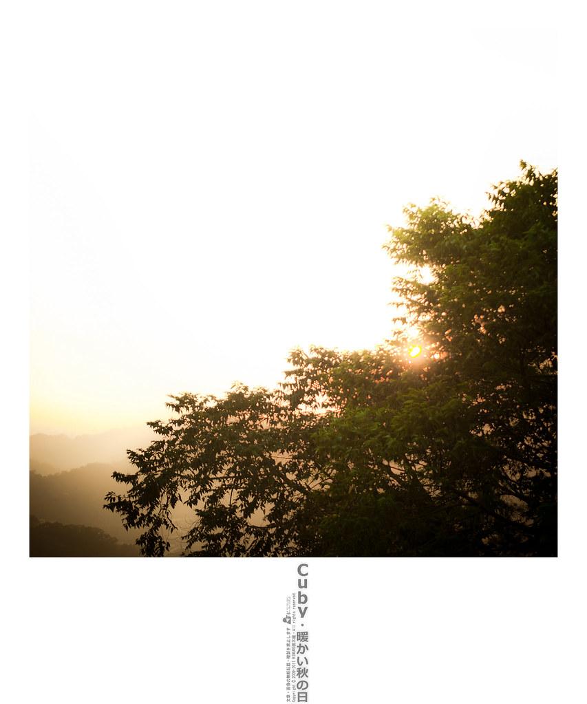 Cuby・暖かい秋の日