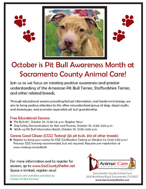 Pit Bull Awareness Month: Free Education, Testing at Sacramento County Animal Care Facility