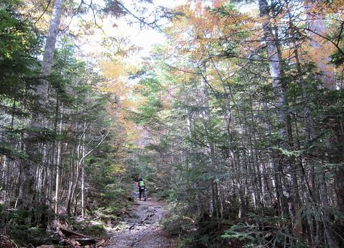 高見石への登山道 2011年10月11日9:55 by Poran111