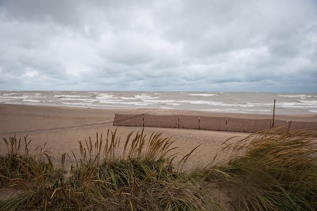 Wind Storm Oct 19 2011-6