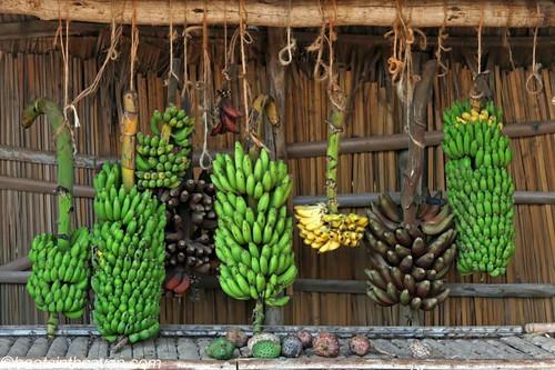Thomas's banana stand