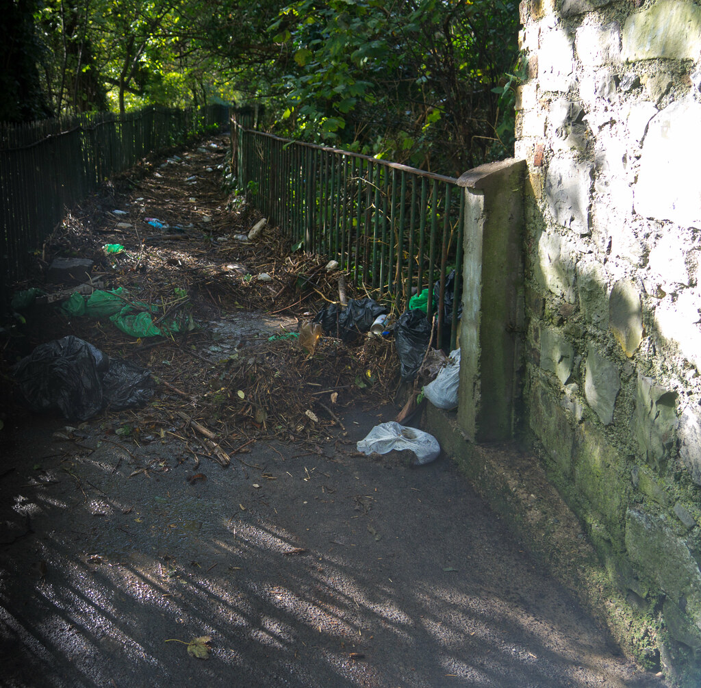 Flooding In Dublin - The River Dodder - Debris Remaining After Flooding