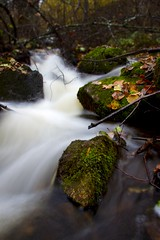 Stream (Mr_Jns) Tags: longexposure autumn water stream flowingwater