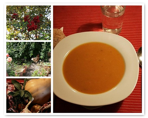 butternut squash suppe  mosaik