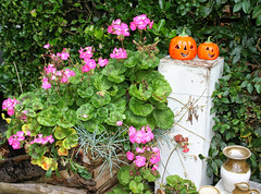 Pumpkins galore (larigan.) Tags: autumn fall gourds vegetables fruit colours village westsussex pumpkins harvest fair colourful variety marrows upton squashes cucurbita slindon pumpkincapitaloftheworld pumpkinfair larigan phamilton gettyimageswants gettywants welcomeuk