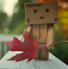 . (chi_kigal) Tags: autumn red fall 6x6 film nature leaves mediumformat square leaf hasselblad 500c 80mm danbo bsquare fujipro400h danboard