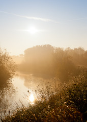 Fog. (180Pixel) Tags: fog nebel badoeynhausen canon35mmf2 eos400d