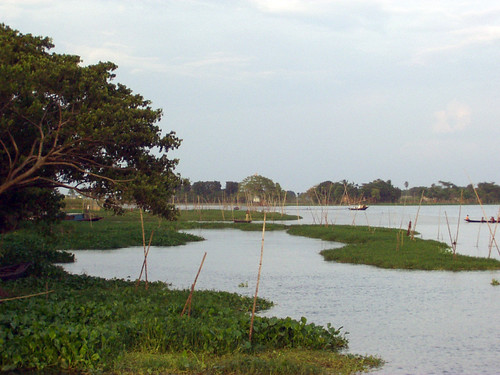 Fish sanctuary, Bangladesh. Photo by WorldFish, 2004