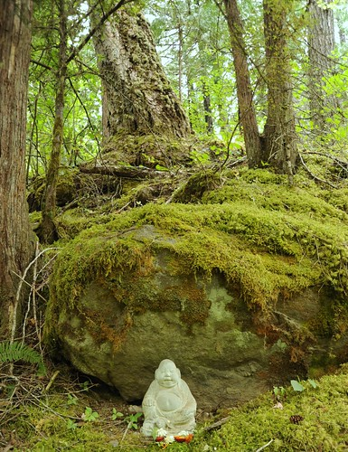 Forest meditator with flower offerings, under mossy rock, Breitenbush Hot Springs, Breitenbush, Marion County, Oregon, USA by Wonderlane