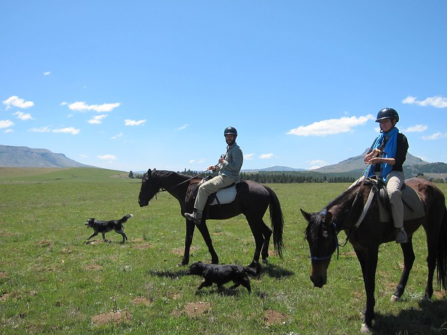 Horseback in Hogsback