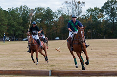 Fall Polo Classic-12 (King_of_Games) Tags: horses horse field helmet player riding pony ponies players mallet polo gallop helmets mallets ravenel galloping willking willbking hydeparkpoloclub