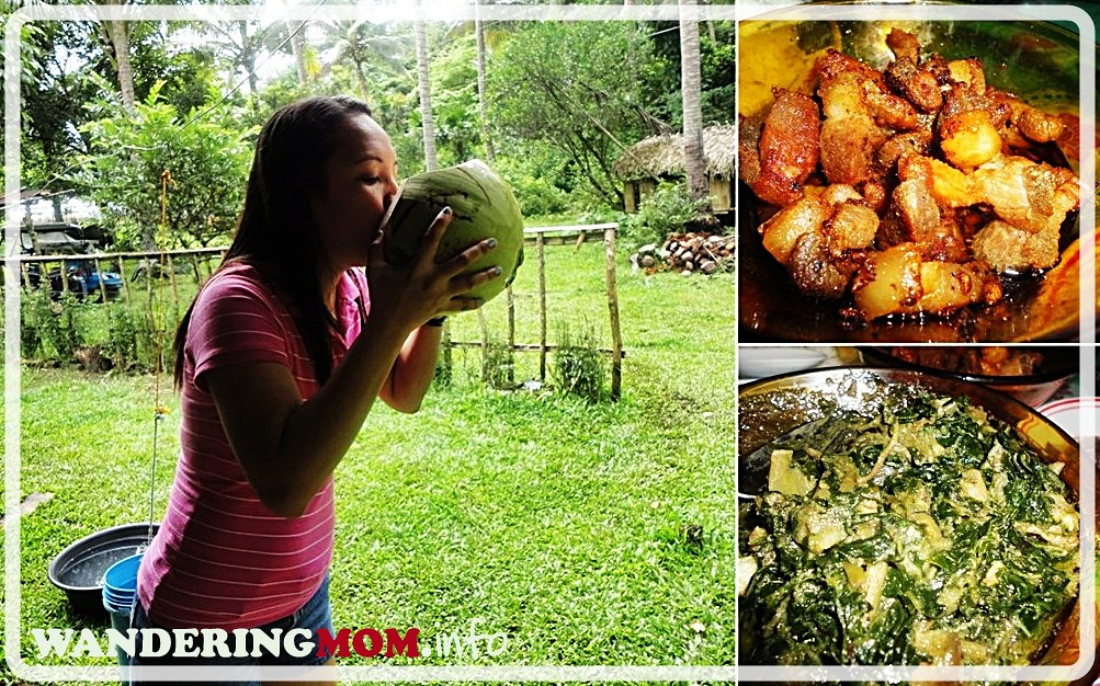 Laing and Adobong Bicol