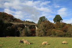 Railway Viaduct, Rathdrum (Chris*Bolton) Tags: ireland architecture landscape scenery sheep railway scene viaduct wicklow grazing rathdrum bej mywinners abigfave artofimages