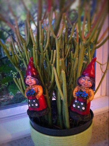 The couple that gnomes together...