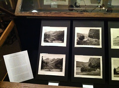 Display Case 5 - Revisiting the Landscape Masters