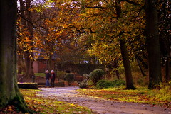 November (* RICHARD M (Over 5 million views)) Tags: november autumn trees fall leaves candid parks couples paths southport pathways sefton publicparks heskethpark