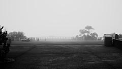 Empty (VirtualWolf) Tags: bw fog