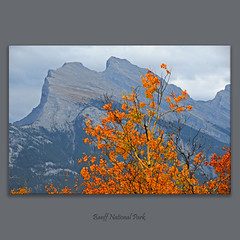 Mount Rundle #1215 (alexander.garin) Tags: autumn fall nature landscape rockies canadianrockies bestcapturesaoi elitegalleryaoi mygearandme mygearandmepremium mygearandmebronze