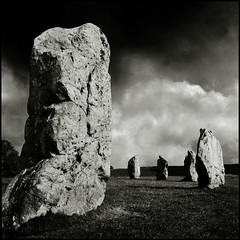 Like the teeth of a great beast ... (Fusty Box) Tags: uk ilfordhp5 wiltshire avebury neolithic stonecircle henge rolleicordvb waleditch