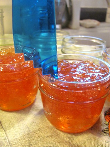 We Sure Can's Classic Apple Jelly