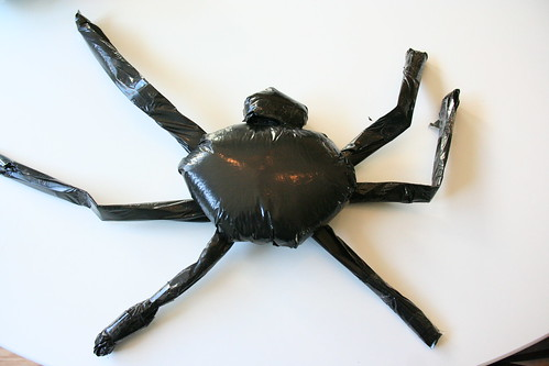 Garbage bag spider