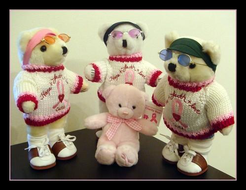 The Teddy Bears in Japan introduce their new BCA friend.
