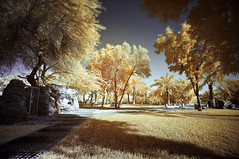 Finally (Infrared Photography) (josecarlo1129) Tags: sunset apple photography travels nikon landscaping tripod 15 tokina infrared pro mm grip 77 hoya ballhead d300 r72 1116 macbook manfortto 293corei78gbram2011wacom