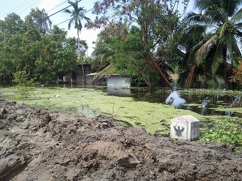 flooding6
